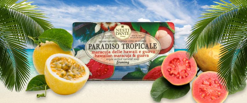 tropical paraiso